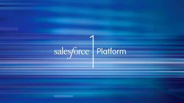 Salesforce Platform Developer 1 Certification Course