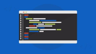 Learn DART Programming Language By Creating A Web App
