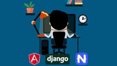 Full Stack Dev – Web, Mobile, Back-End API (Angular, Django)