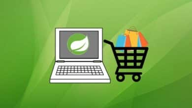 Spring Boot E-Commerce Ultimate Course